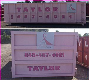 taylor pink container